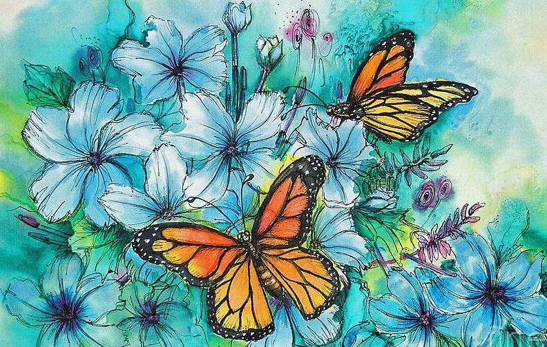 butterlies
