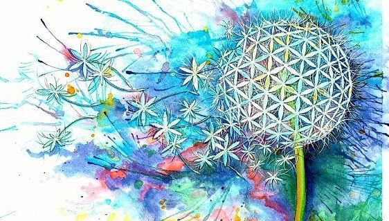 flower of life - mariao